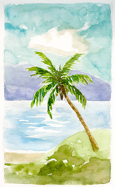 a_tropical_beach_5072992807_o.jpg