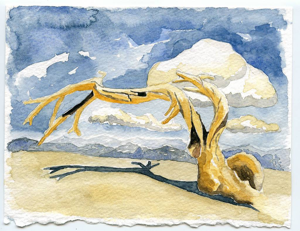 watercolors-003_2170661282_o.jpg