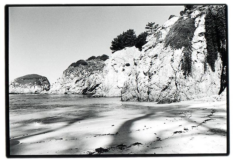 China_Cove_Point_Lobos_343024408_o.jpg